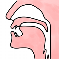 position of the tongue for the n in sin
